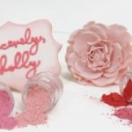 The Sugar Art Sincerely Holly set of 4 elite colours